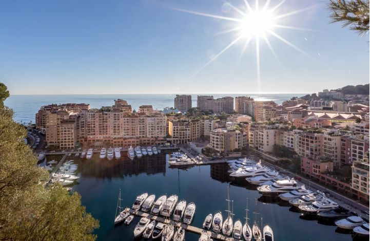 Apartment for sale - Fontvieille - View on the port - Savills